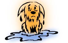 Как спасти собаку на воде. Искусственное дыхание