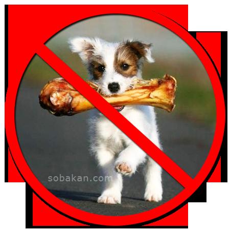 Собакам кость нельзя