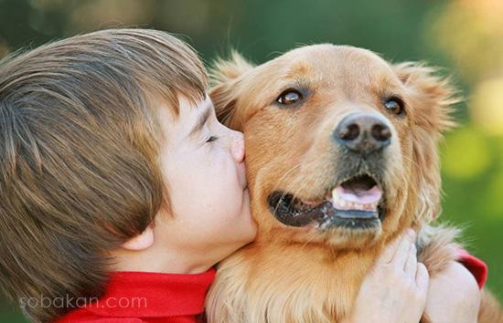 Ребенок целует собаку