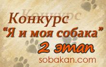 Конкурс «Я и моя собака» 2 этап