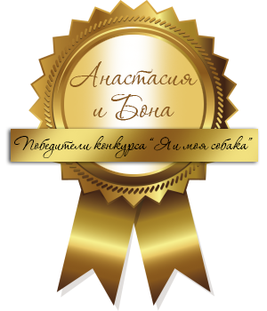 Медаль победителю