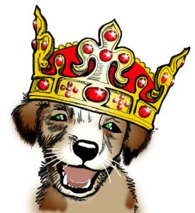 собака в короне