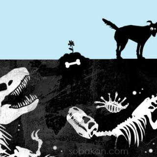 Почему собаки зарывают кости