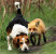 Выбор клички для охотничьей собаки