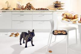 Чем кормить щенка бульдога