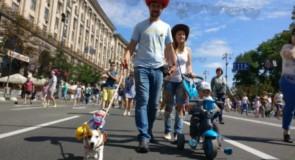 Первый парад собак в Украине. Парад джек-рассел-терьер на Крещатике в Киеве